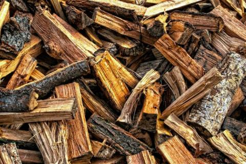 Roadside checkpoints to monitor illegal firewood transport in N.H.
