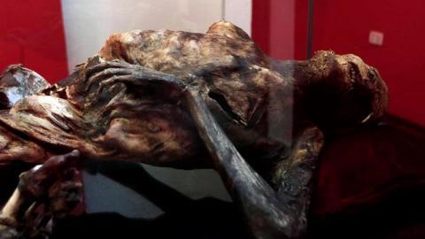 Mummified body found on Mexico's highest mountain goes on display | Fox News Latino